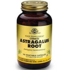 Solgar Astragalus Root Συμπλήρωμα Διατροφής για την Ενίσχυση του Ανοσοποιητικού Συστήματος 100veg.caps