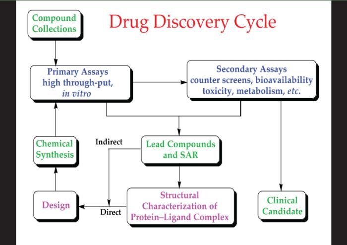 drug-development-process-11