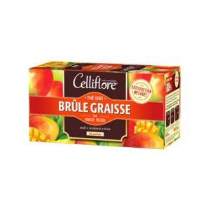 CELLIFLORE BRULE GRAISSE