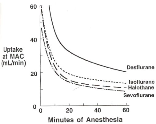 Anesthesia Circuitry Anesthesiology