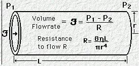 Physics19
