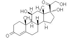 Medical Pharmacology: Autonomic Pharmacology and Asthma