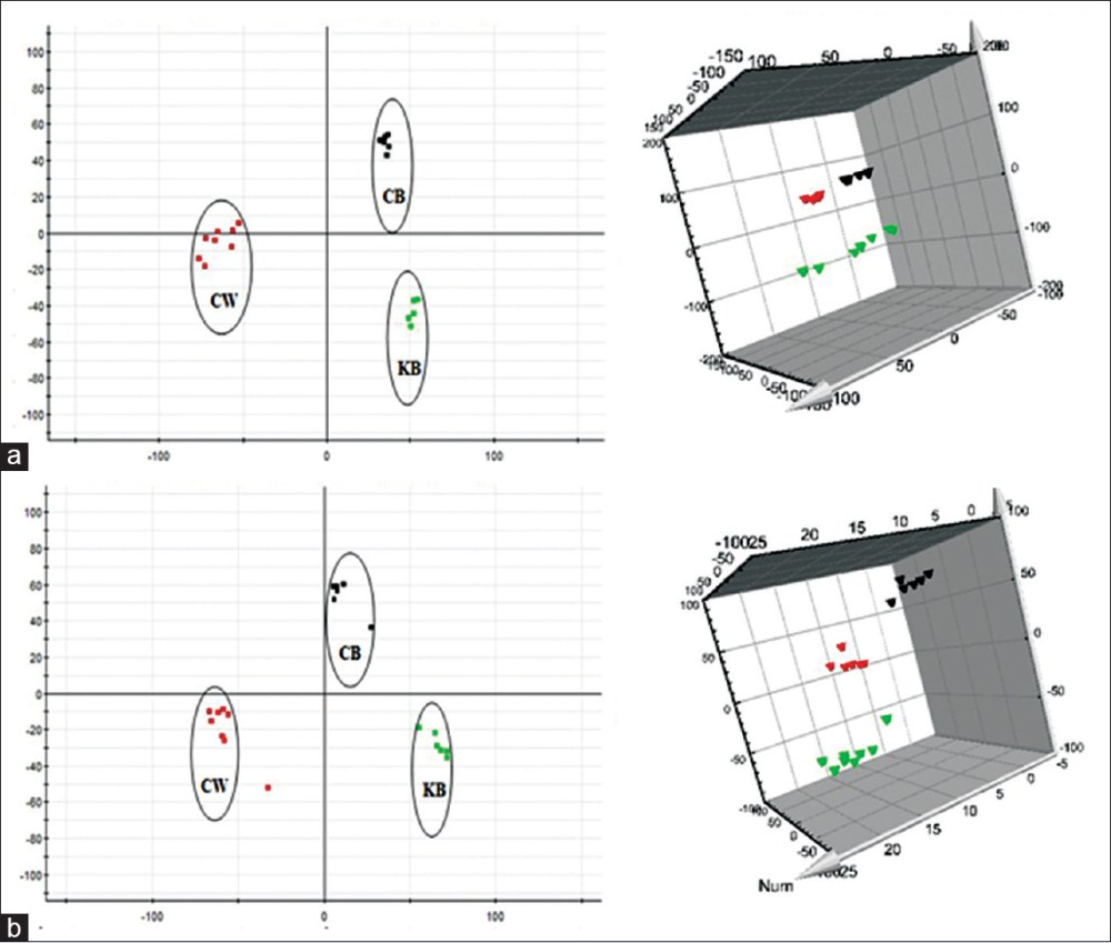 medium resolution of figure 4 principal component analysis score plots of urine samples collected from cw group cb group and kb group of rats in the 6th month