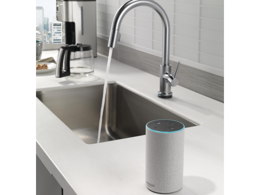 delta voiceiq technology 2021 01 29