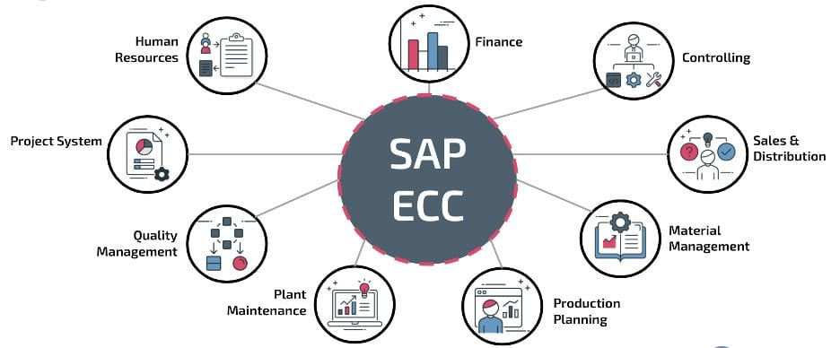 A graphic identifying business processes SAP touches, including HR, Finance, Sales & Distribution, Quality Management, and more.