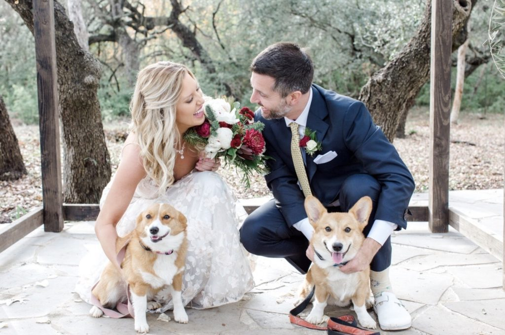 A picture of Kate in a wedding dress with her husband and two Corgis