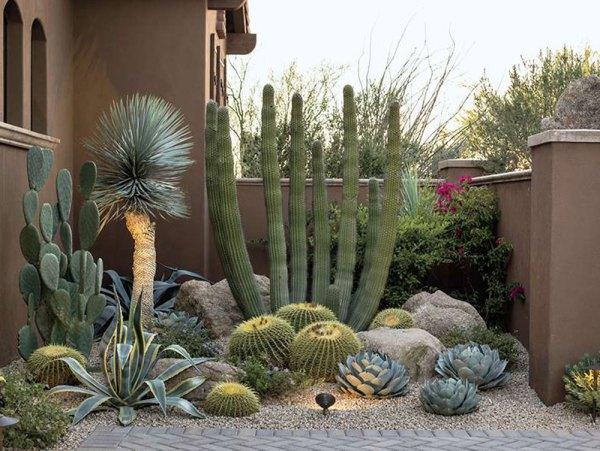 desert lush - phoenix home & garden