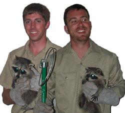 philadelphia wildlife control pest