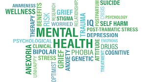 mental illness disability lawyer