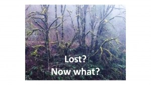 Lost-Now-What