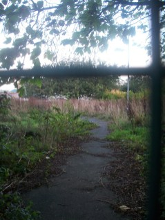 Overgrown path behind wire fence. Old Westhulme Hospital site