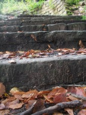Stone steps and autumn leaves, Tandle Hill Park