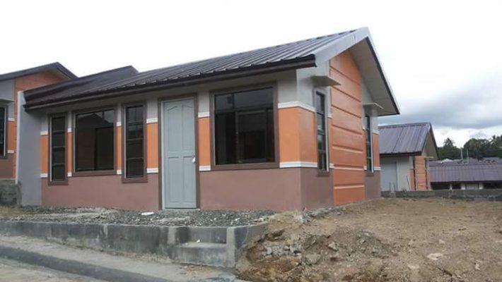 Calamity Pag Ibig Loan Form