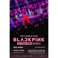 BLACKPINK delights Filipino fans for a night of their lifetime