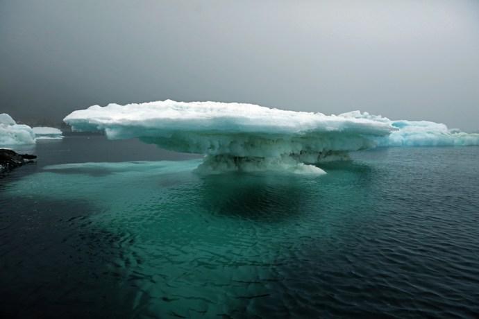 Eisberg Antarktis Katzer