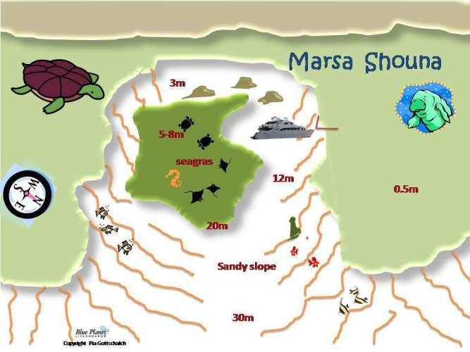 Marsa El Shouna