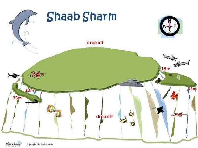 Shaab Sharm