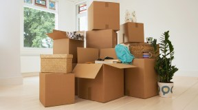 My #1 Favorite Moving Tip! ? #SamsClub3M
