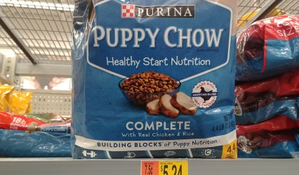 Purina Puppy Chow at Walmart
