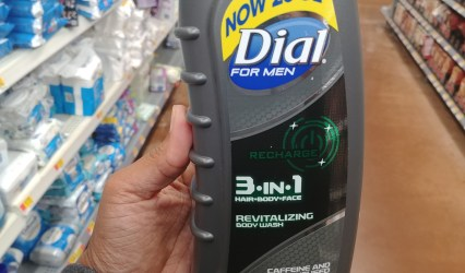 Dial body wash for men at walmart