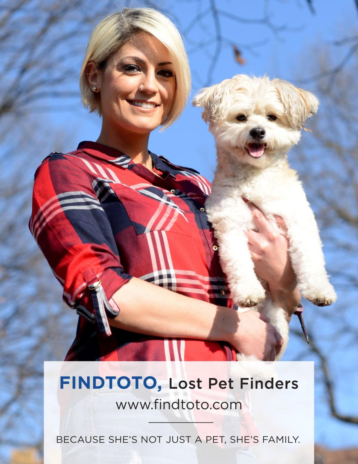 Find Toto