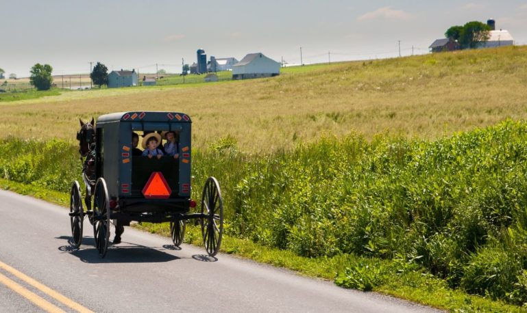 specialty tours amish experience