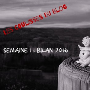 #CoulissesDuBlog n°1 : Bilan 2016