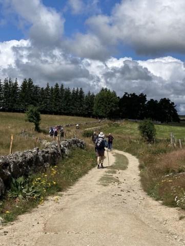 chemin de Compostelle Aubrac