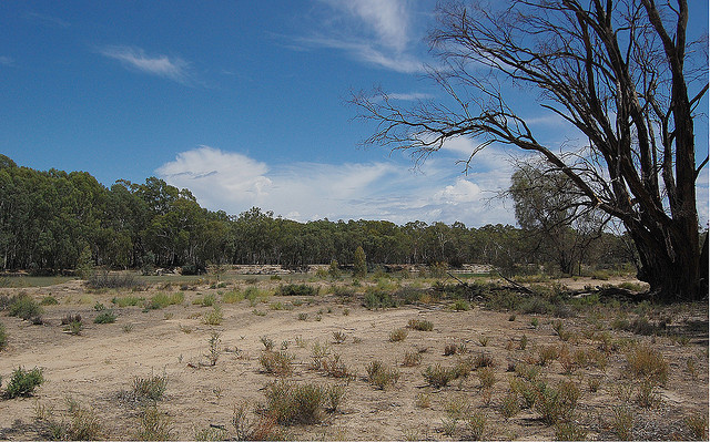 Water Shortages in Australia