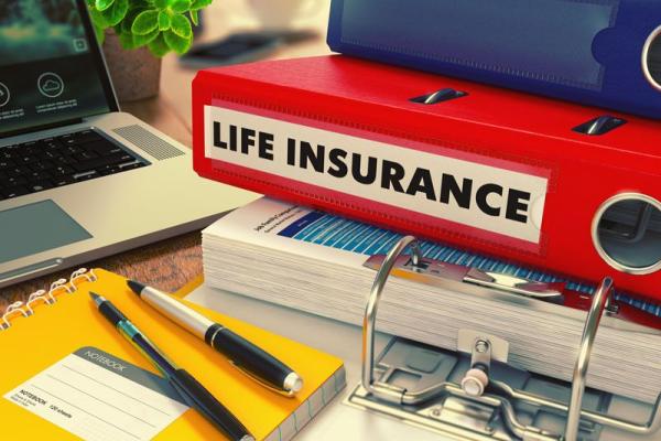 "binder labelled ""Life Insurance"""