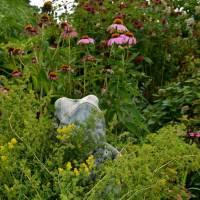 master gardener:  in her flower garden (1 of 3)