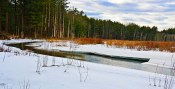 Natural – snowy river bank wetland and forest