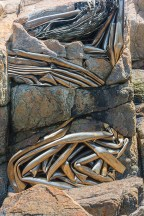 Abstract – composite of twisted metal tubes incorporated with a beach rock
