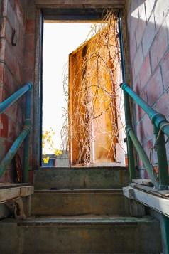 Graphic – view of open door at top of stairway
