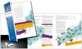 Folder Brochure Combo