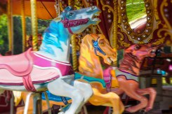 Man-made – Colorful carousel horses