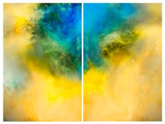 Abstract – diptych of a lion and buffalo emerging from smoke