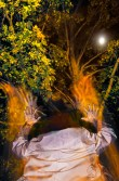 Fantasy – magical cloaked figure in hat reaching for moon in tree