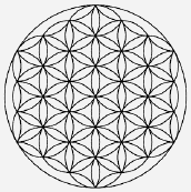 Sacred Geometry; The Flower of Life