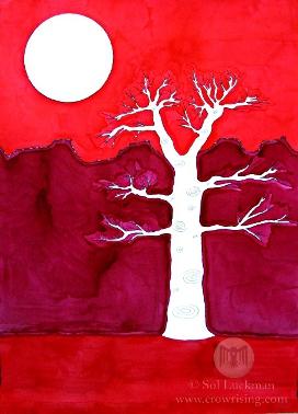 """Canyon Tree"" 2012 © Sol Luckman"