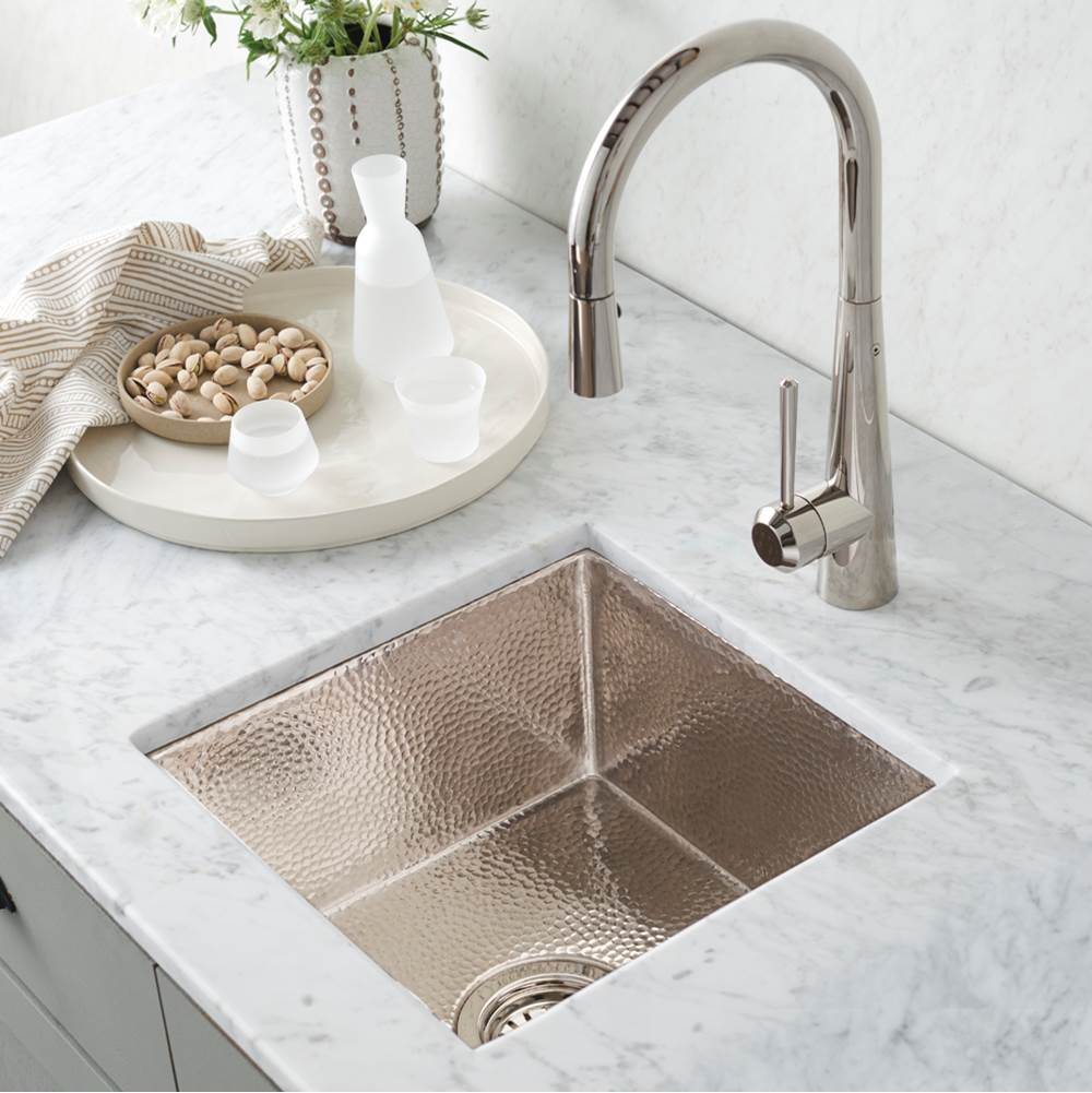 cantina bar and prep sink in polished nickel