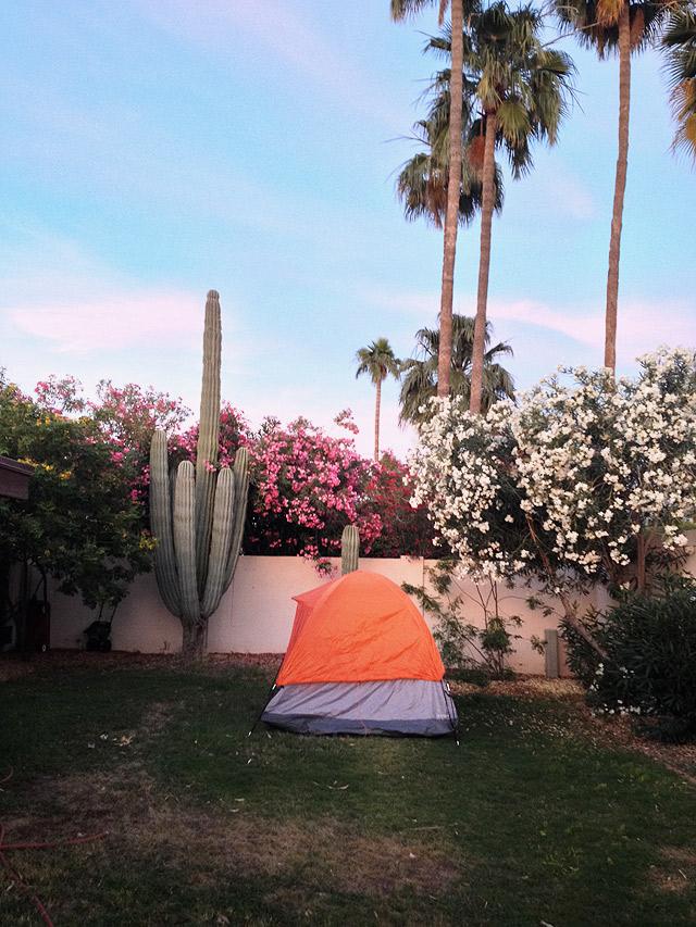 backyard-camping-arizona