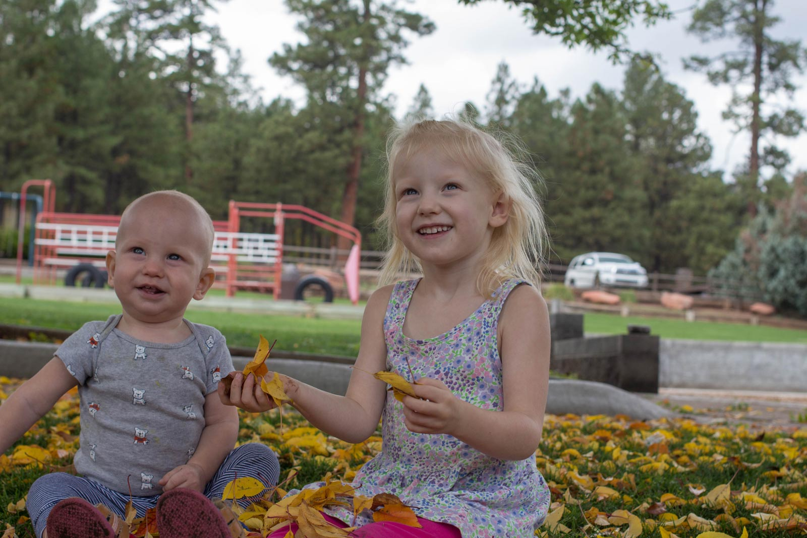 Thorpe_Park_in_Flagstaff_parkportraits-(1-of-16)