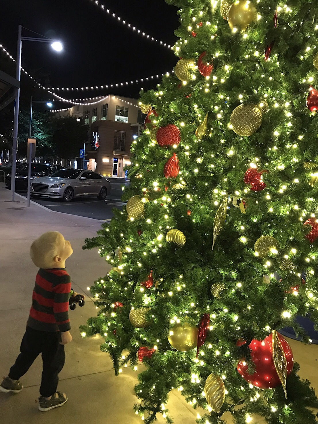 Phoenix Christmas Lights 2020 Review Holiday Light Shows in Phoenix   Phoenix With Kids