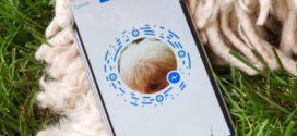 Messenger code, connectez-vous aux 900 millions d'utilisateurs