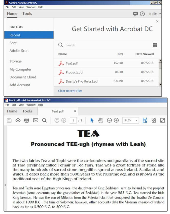09b open acrobat and a pdf file