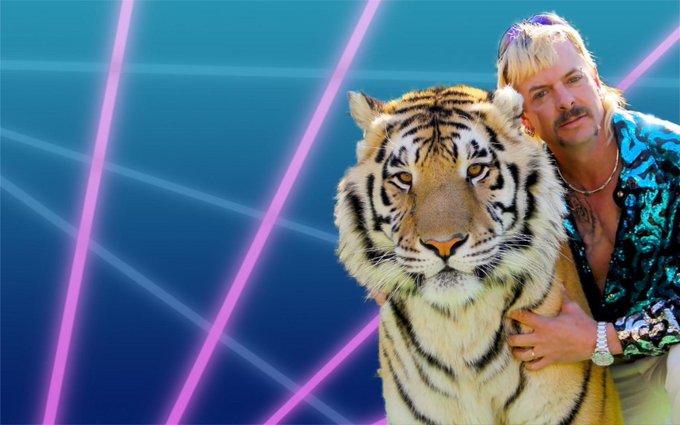 Tiger king Zoom background