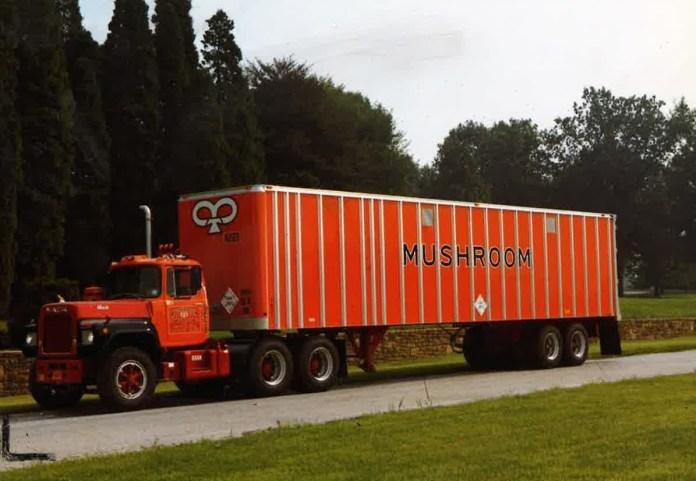 A vintage Mushroom Transportation tractor-trailer combo.