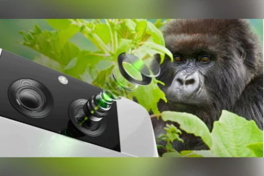 Gorilla Glass DX category is designed to enhance camera optics for smartphones by allowing 98 percent light.