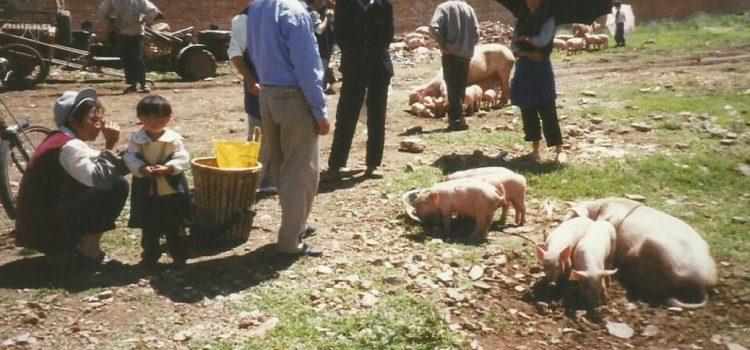 14 juli 2001 Lijiang – Xizhou